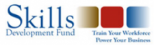 Skills-Dev Fund Logo